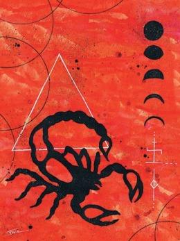 Scorpion-Web